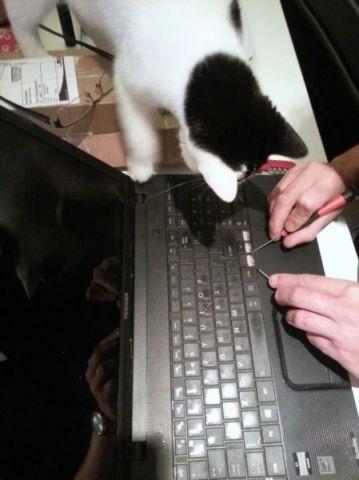 laptop-repareren