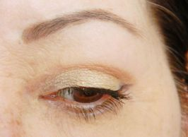 Regard Intense dr pierre ricaud eyeshadow 2