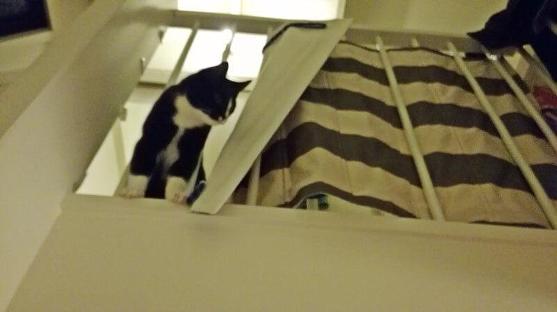 toulouse boven aan de trap