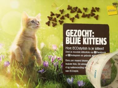 kittenpakket (5)