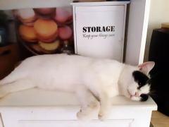 marie storage