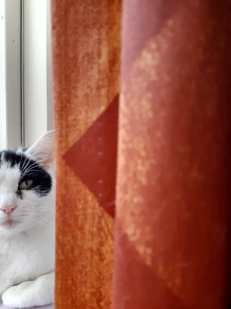 KeeK op de WeeK 8- ONO, Pakketjes, DE Stoelen, The Ordinary & Slaperige Katten... 33 keek op de week KeeK op de WeeK 8- ONO, Pakketjes, DE Stoelen, The Ordinary & Slaperige Katten...