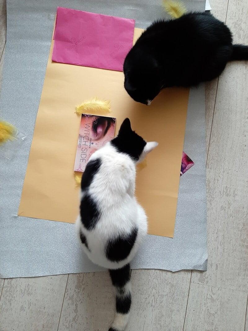 KeeK op de WeeK 8- ONO, Pakketjes, DE Stoelen, The Ordinary & Slaperige Katten... 27 keek op de week KeeK op de WeeK 8- ONO, Pakketjes, DE Stoelen, The Ordinary & Slaperige Katten...