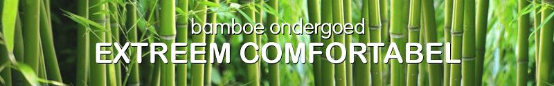 Waarom moet je overstappen op bamboekleding? 11 bamboe Waarom moet je overstappen op bamboekleding?