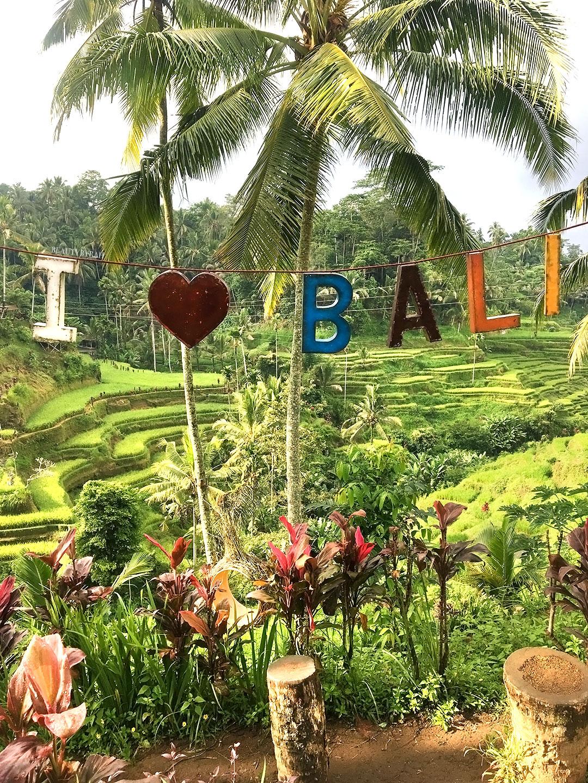 Tegalalang Rice Terraces Ubud Bali