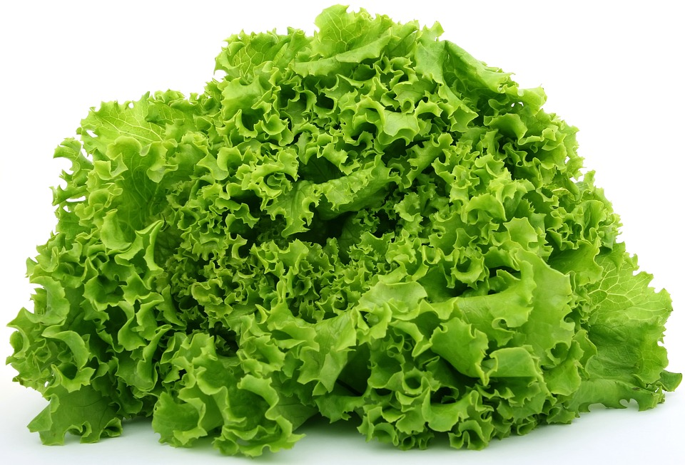 improve your mood through food lettuce