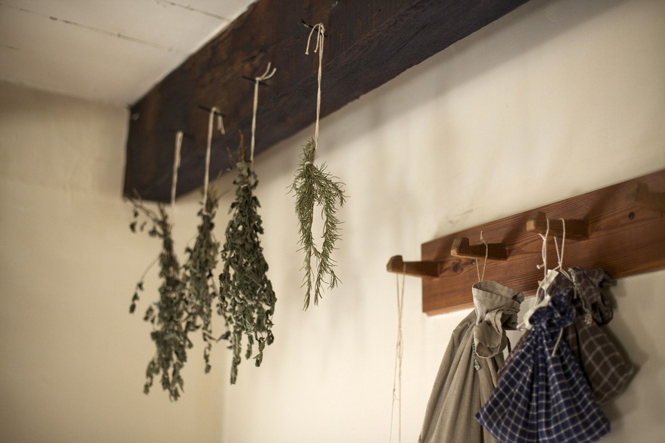 Herb Harvesting and Drying Tips to Save You Money