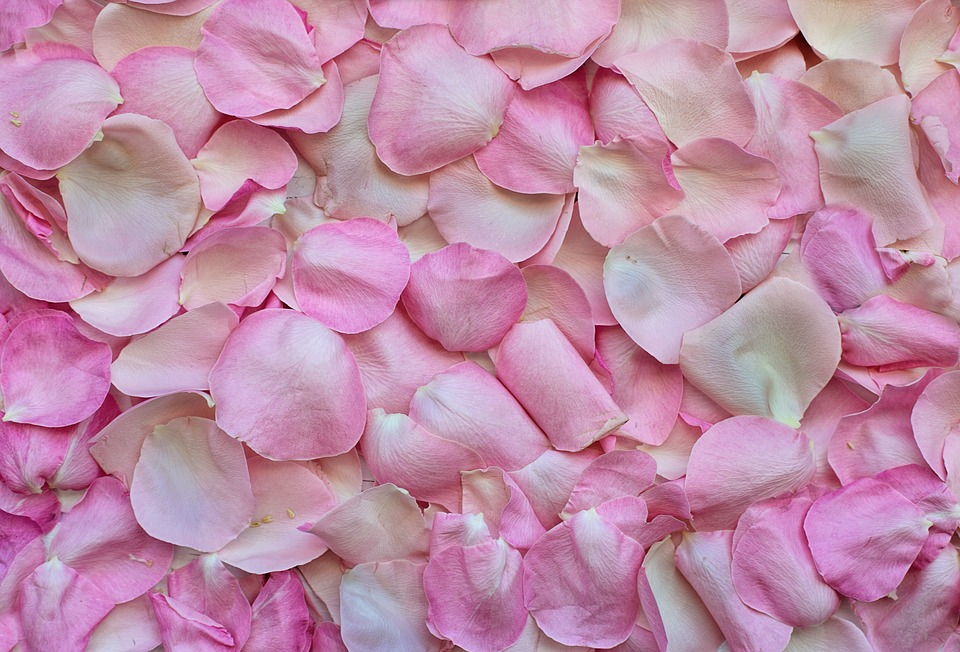 Make Your Own DIY Herbal Sleep Potion Potpourri Rose Petals