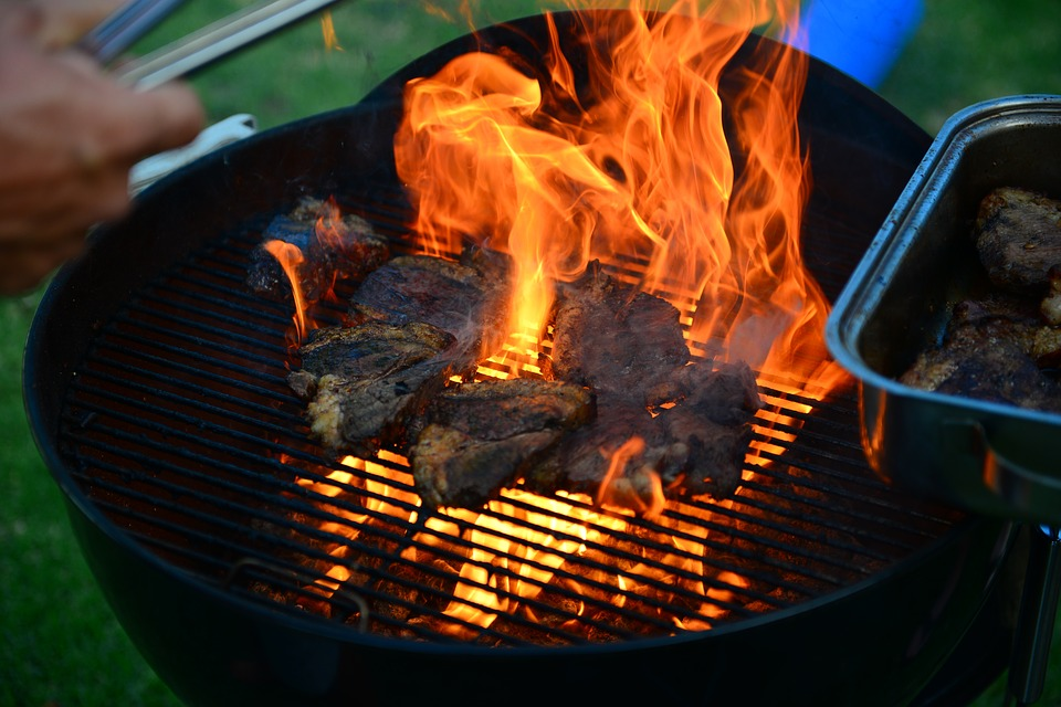 Grilling Fire Grilling Tips for Pet Safety That Owners Should Heed
