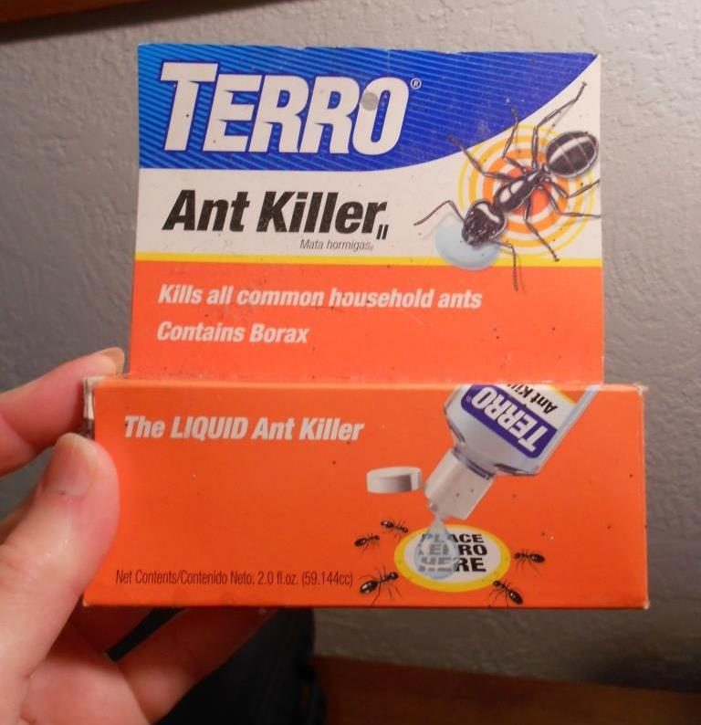 THow to Get Rid of Ants With Terrro Ant Killer