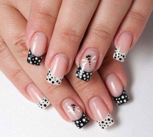 Black and White Polka Dots and Dragonfly