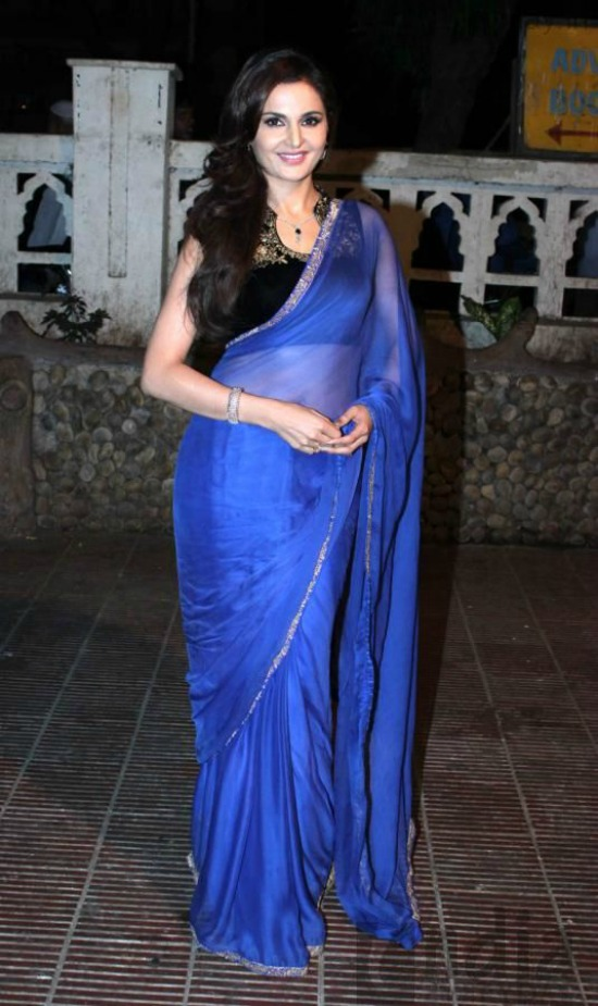 Monica Bedi In Blue Saree With Velvet Blouse