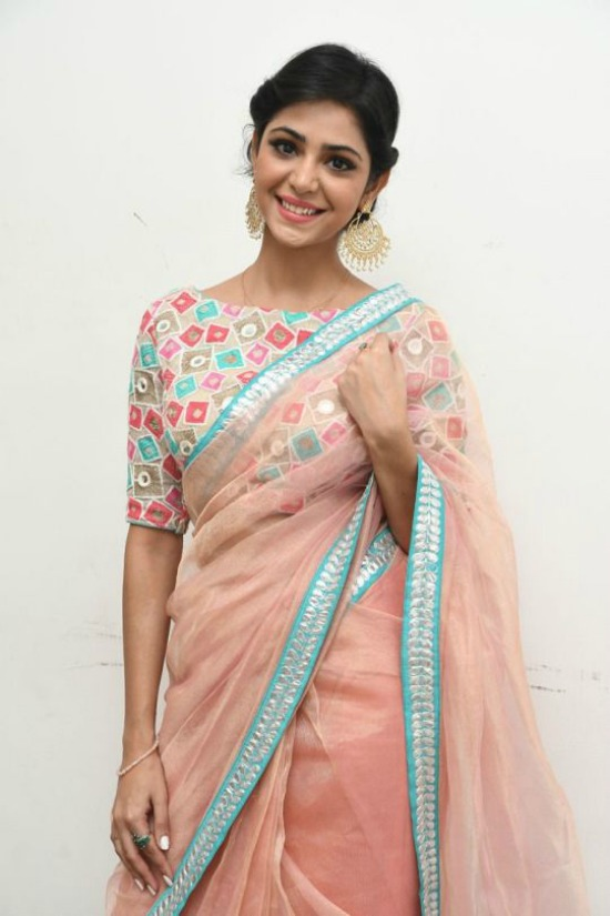 Peach Pink Net Saree With MultiColor Boat Neck Blouse