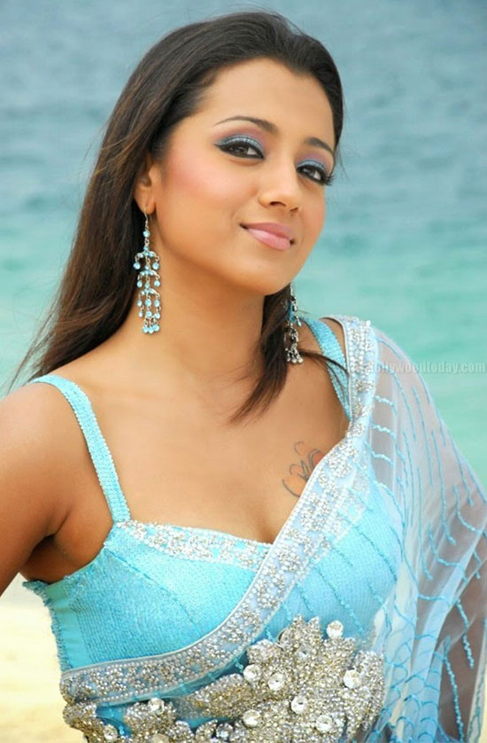 Trisha In Net Saree