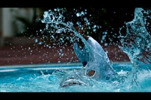 νερό...με μέτρο και αυτό... :-P (photo by Shutterhack)