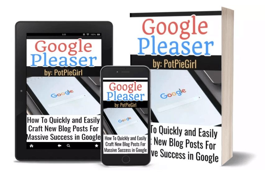 Google Pleaser Course