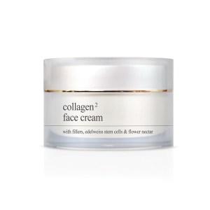 YELLOW ROSE<br /> Veido kremas su kologenu turintis filerio efektą – Collagen2 face cream, 50ml