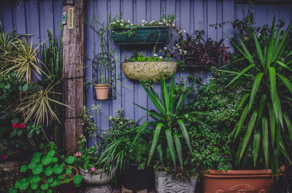 4 Old-Fashioned Gardening Tricks Every Gardener Should Know