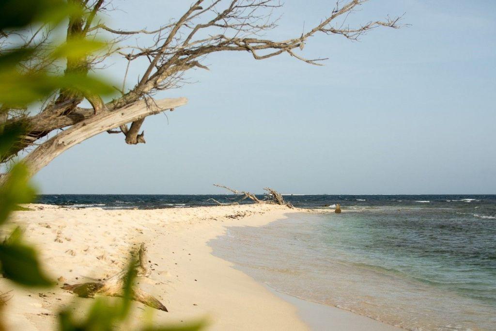 Lime Cay Beach