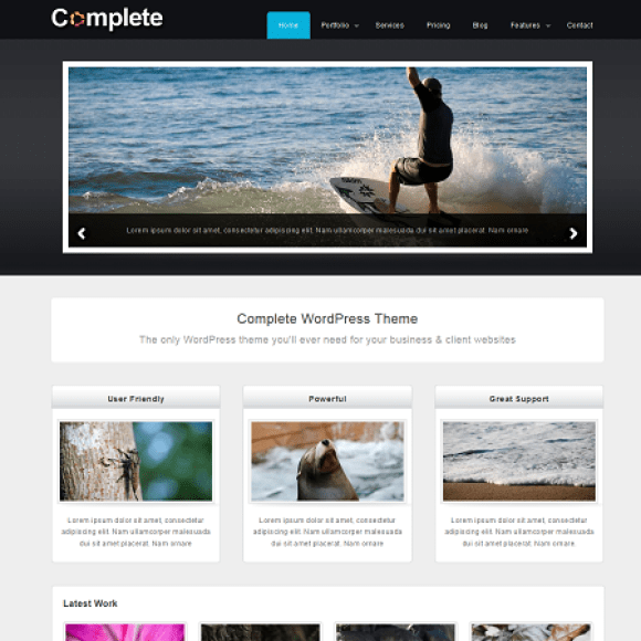 complete-theme-wordpress-portfolio