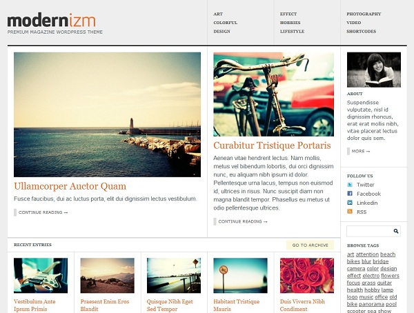 modernizm-theme-wordpress-premium