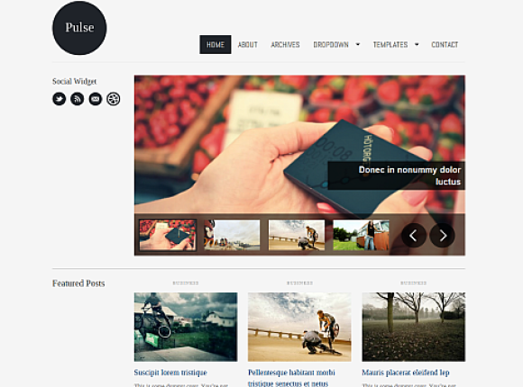 pulse-theme-wordpress-premium