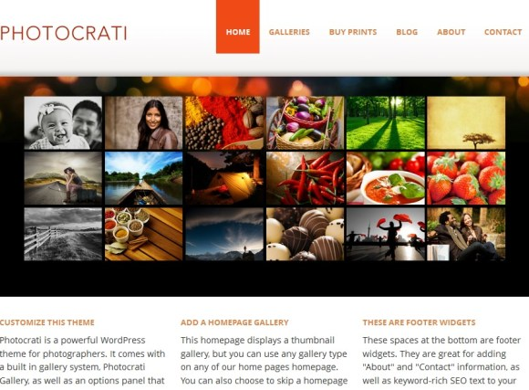 photocrati-theme-wordpress-pour-photographes-artistes