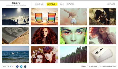 fluxus-theme-wordpress-photographie