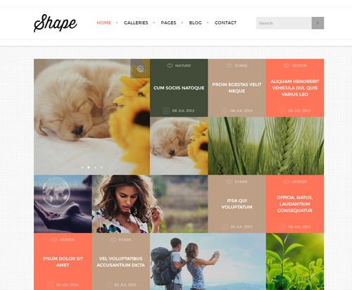 shape-theme-wordpress-photographie