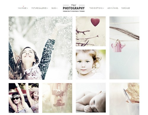 tripod-theme-wordpress-photographie