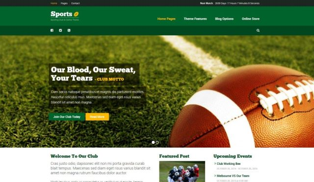 sport-theme-wordpress-site-sport