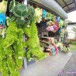 Stuffed Toys and other souveneir items – Crocodile Farm