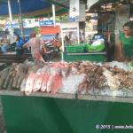 "Fish Stall ""Paluto"" in Bay Walk"