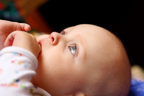 desarrollo cerebral del bebe