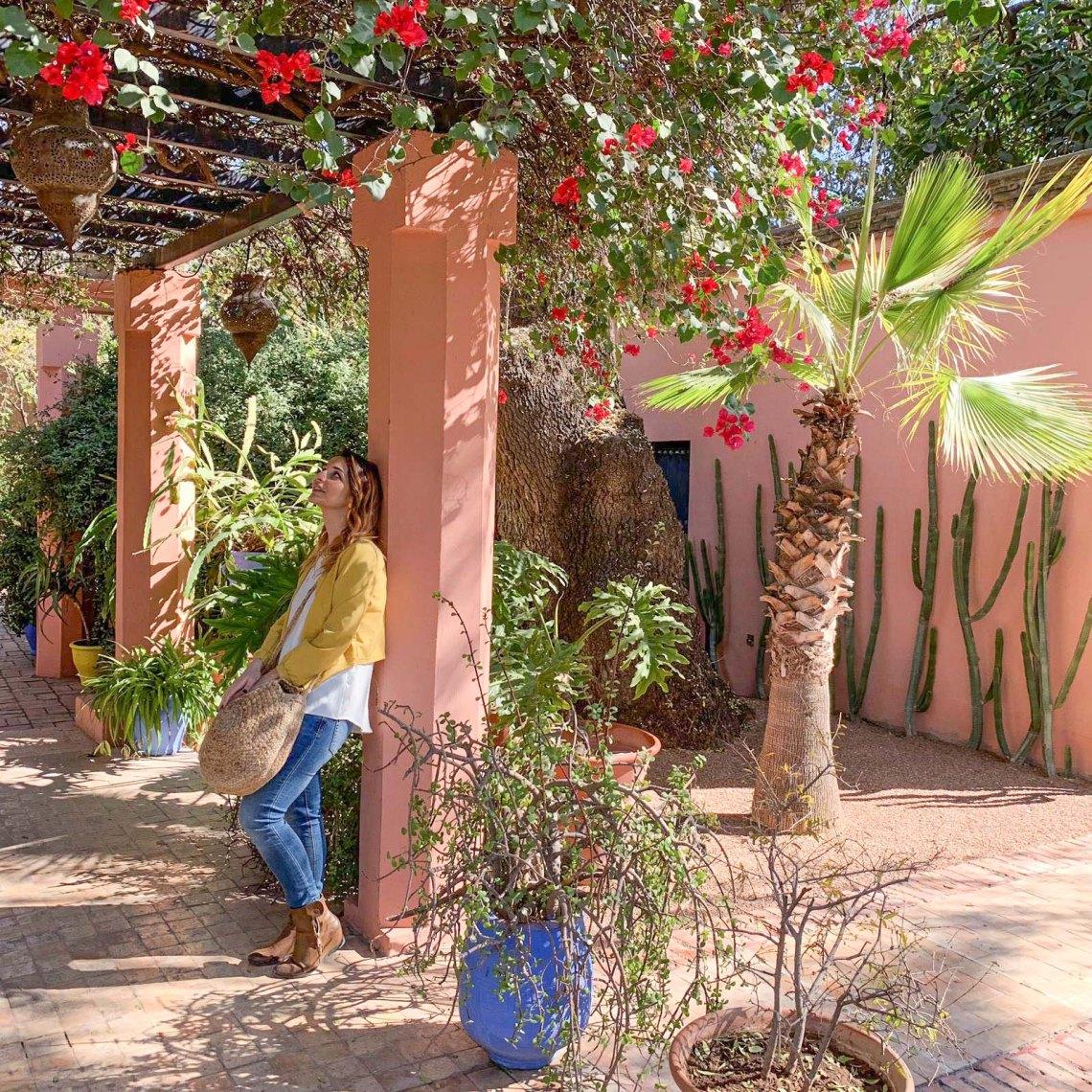 giardi-majorelle-piante
