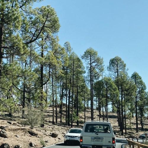 cover noleggiare un'auto a Tenerife