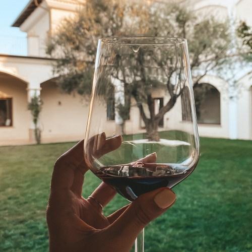 senatore vini degustazione a cirò
