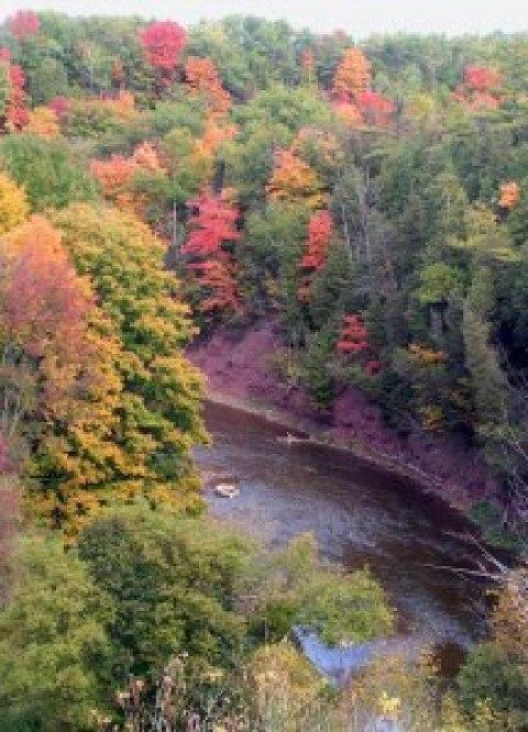 What a view of Autumn Splendour