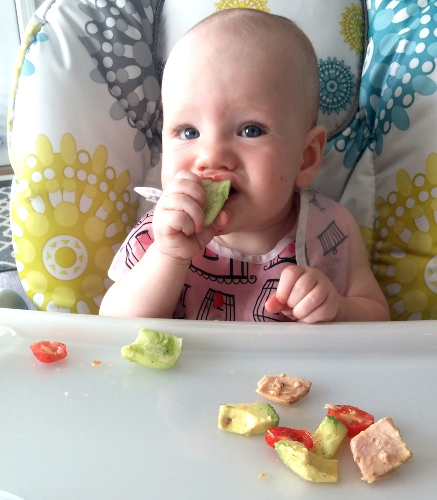 Finally some fresh baby-led weaning ideas for 6-10 months! Gotta check this out!