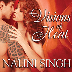 Berls Reviews Visions of Heat