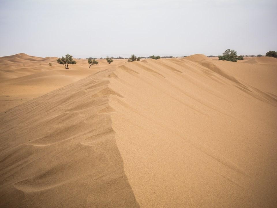 Sanddünen im Erg Chegaga