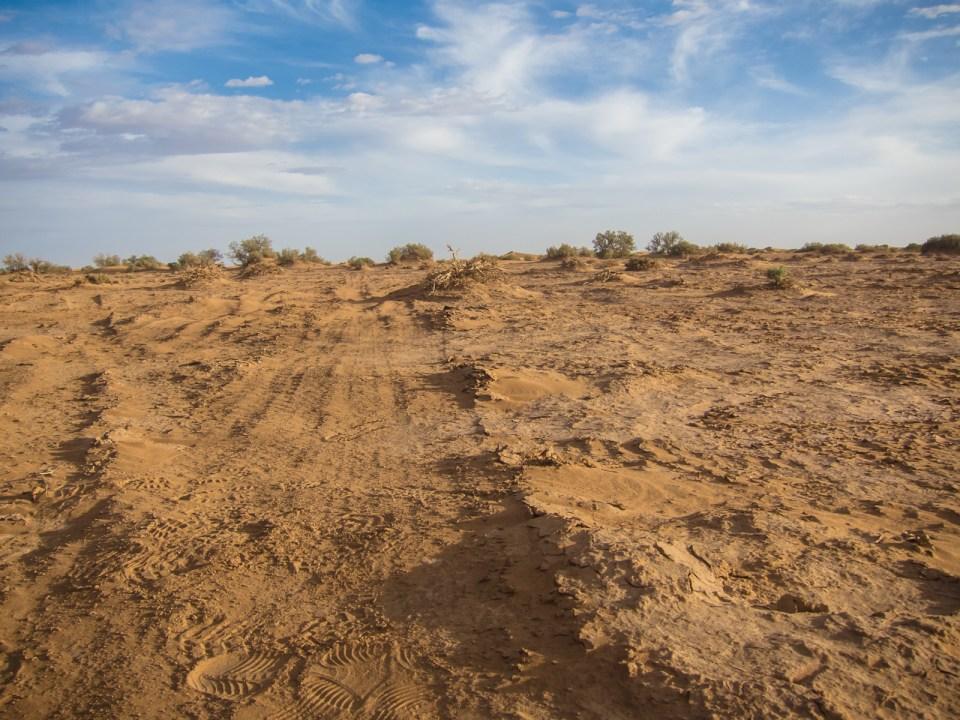 Piste in der marokkanischen Sahara