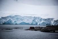 Bye, bye, Port Lockroy: Zurück bleiben die Pinguine