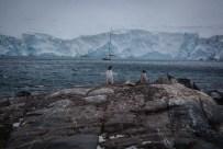 Regenten des Eises: Pinguine