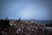 """Kormorane und Pinguine, im Hintergrund """"MS Expedition"""""""
