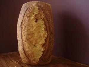 Aldergrove Sourdough 36 oz pan