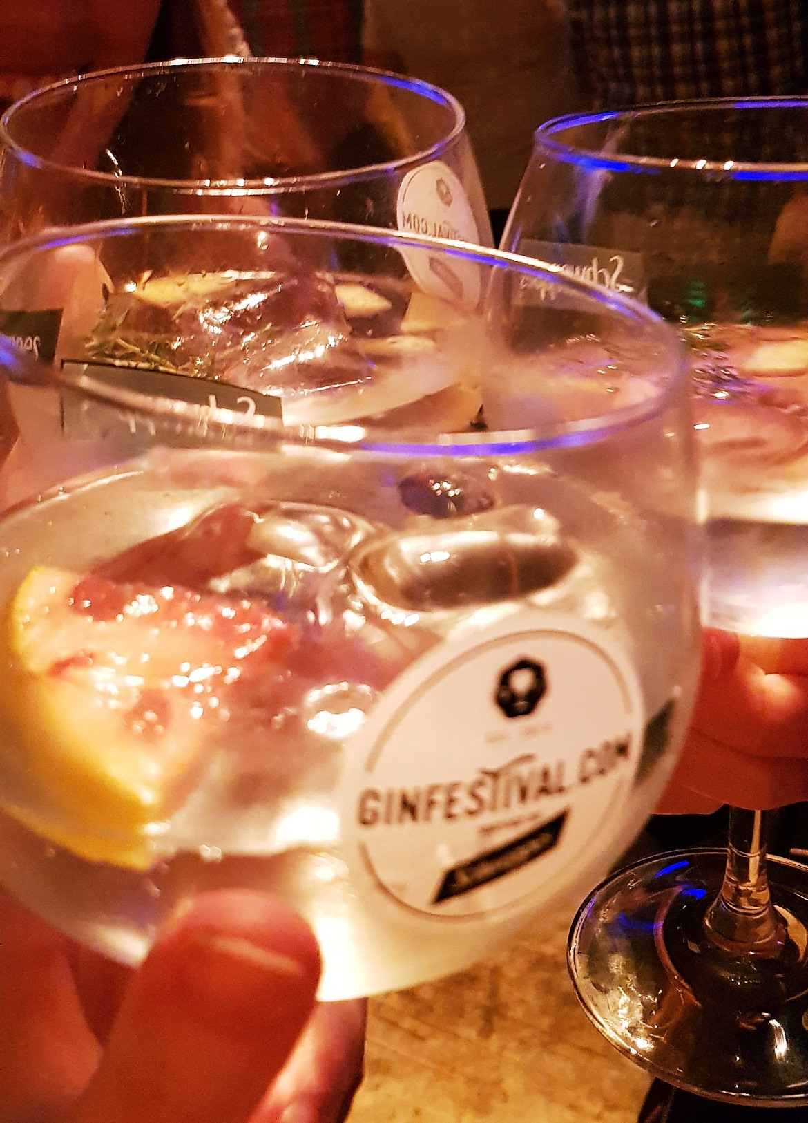 Gin Festival - June 2018 Monthly Recap by BeckyBecky Blogs