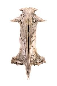 Fishbone 2