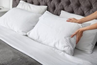 killing bed bugs in pillows in 7 easy
