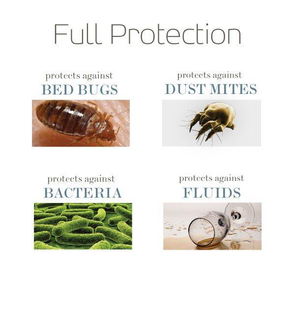saferest premium hypoallergenic waterproof zippered bed bug proof pillow encasement